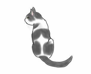 My kitty by VinylScratchDJ