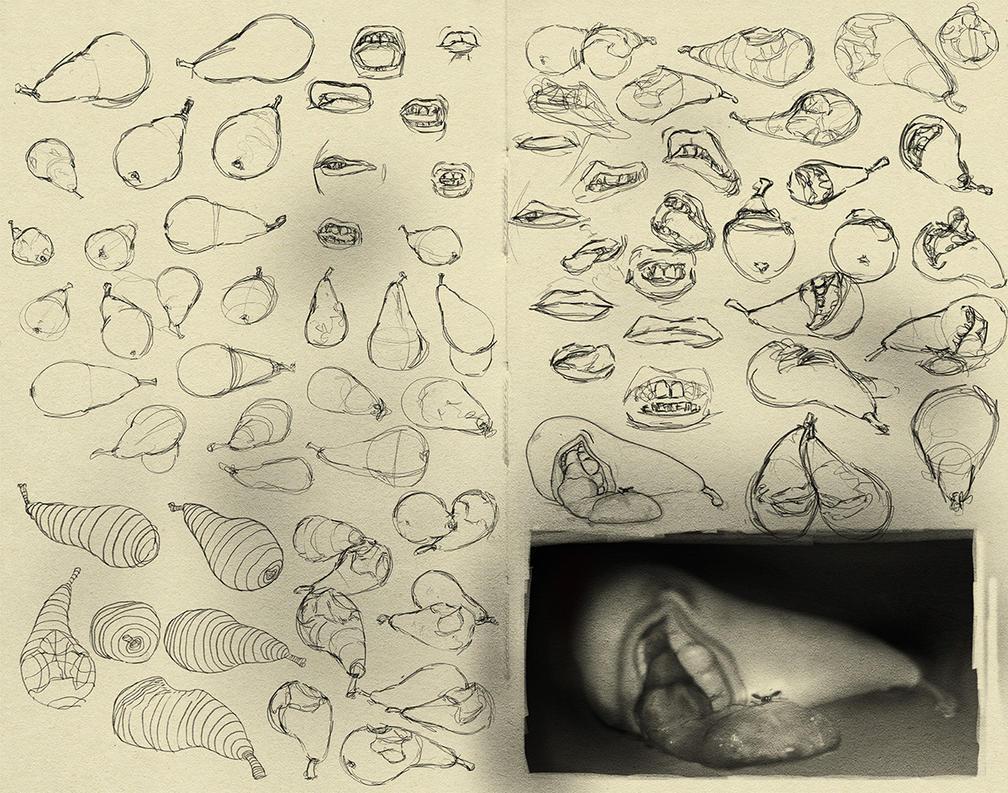 Pear studies by haikuo
