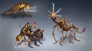 Thunder Bug Life Cycle