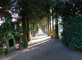 Graveyard Avenue