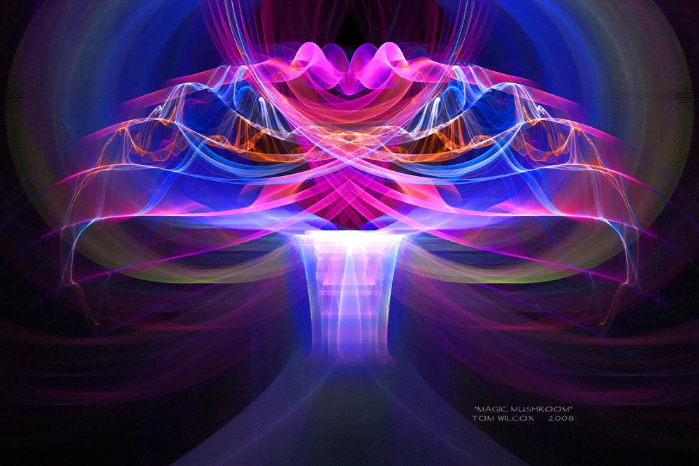 Magic Mushroom by TomWilcox on DeviantArt  Magic Mushroom ...