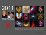 2011 Fractal Calendar A
