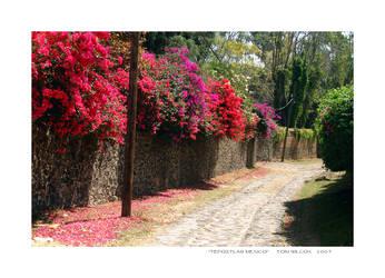 Tepoztlan Mexico by TomWilcox