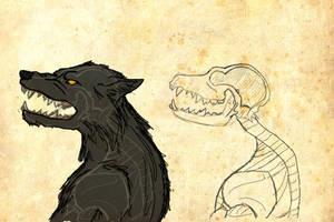 Werewolf Anatomy: Head Profile by LadyYonder