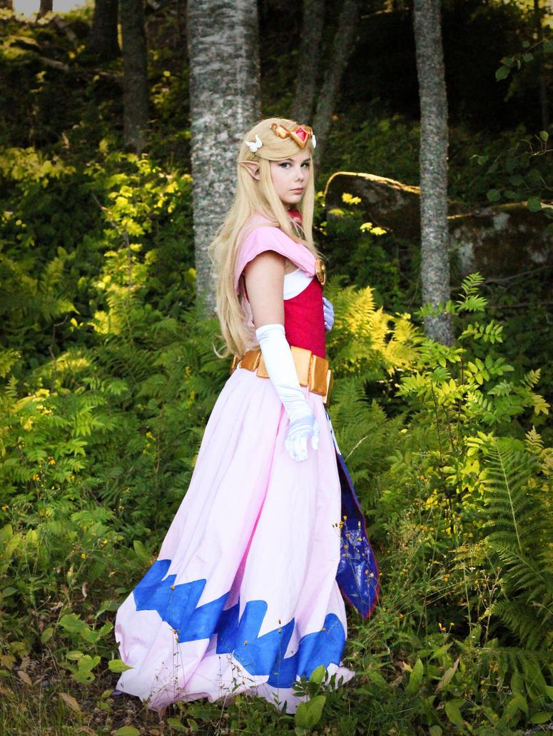 Toon Zelda by Petjan
