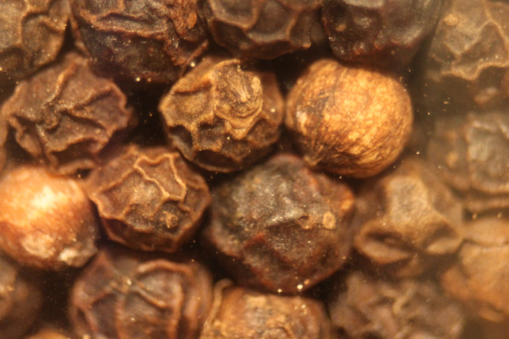 Peppercorns by YellowDizzyLombax