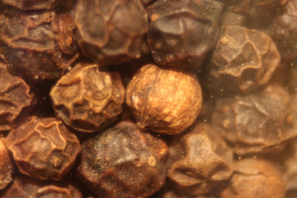 Peppercorns 2 by YellowDizzyLombax