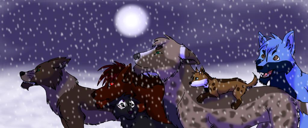 My Wolf OCs by NokaWolf