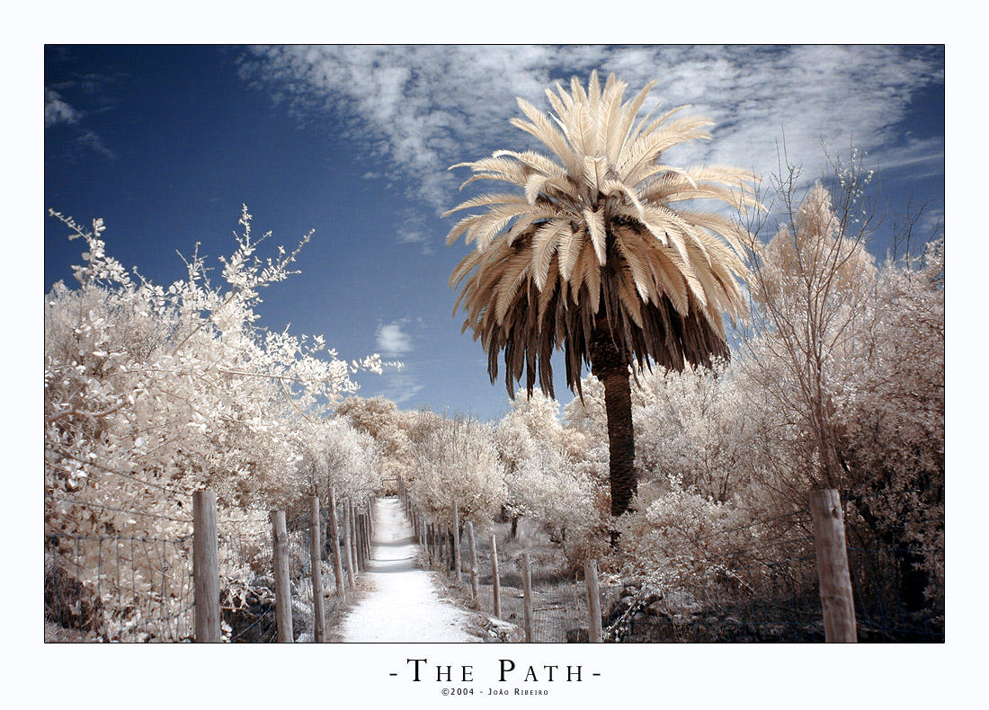 the path by stratys