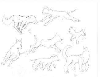 Dog Running Sketches by ShadowHawk04