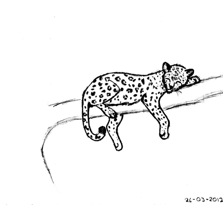 sleeping leopard by akamaruz on deviantart