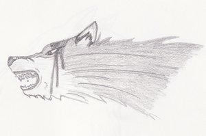 Tsume wolf by Yura-Guppie