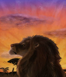 African sunset by Borguare