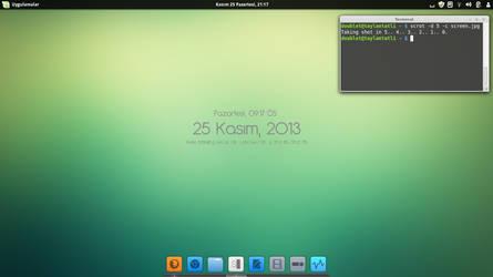 Linux Mint 16 Petra - Cinnamon