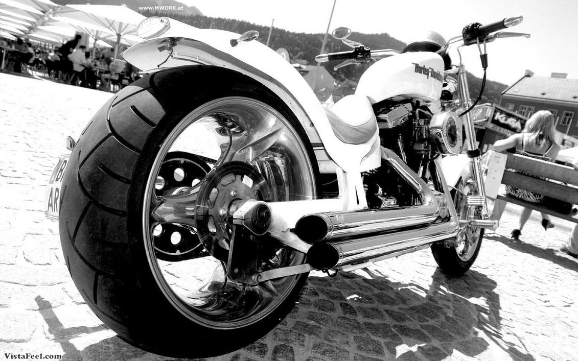 Harley Davidson by mtpocketz