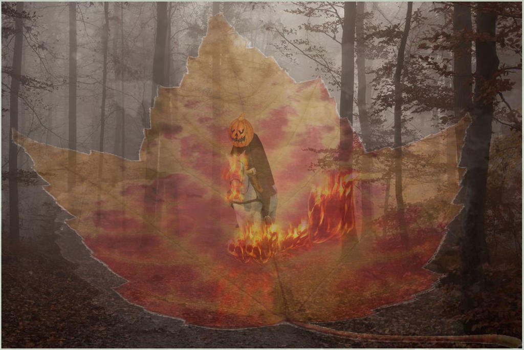 The Headless Horseman wandering in the forest.....
