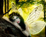 Fairy-by-Marlo