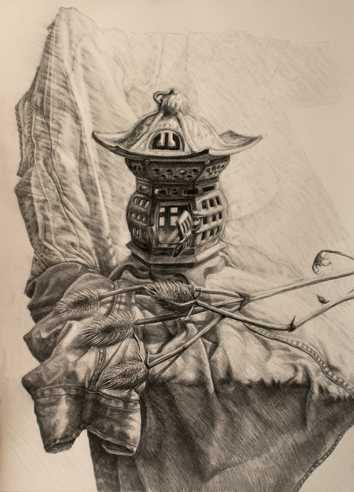 Chinese Lantern Still Life