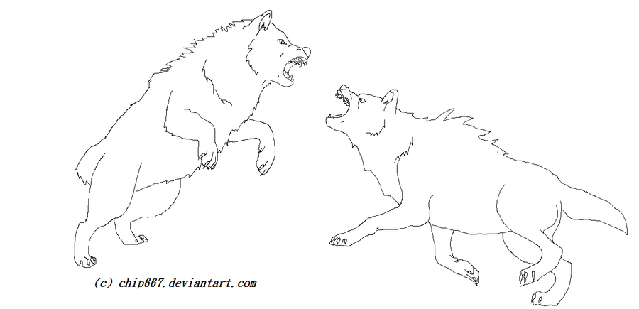 Wolf Fight Lineart by ...