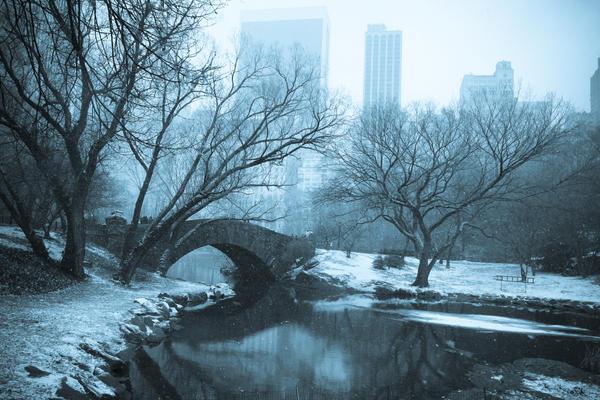 Ciudad del Eterno Caos Central_Park_Bridge_by_blank69