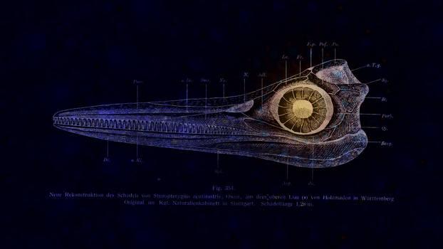 Ichthyosaur Skull Fractal Wallpaper by saintabyssal