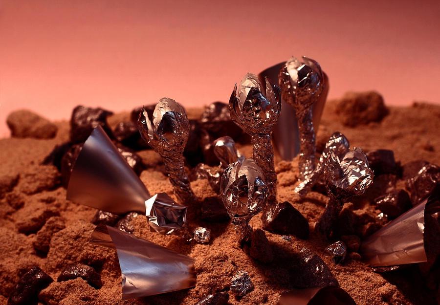 Martian Sandlife