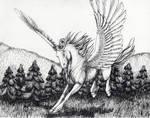Pegasus at play