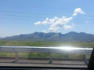 Giant Roadrunner from White Sands, NM.