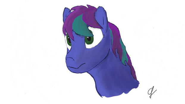 Shaded Pony