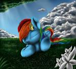Sleepy Rainbow