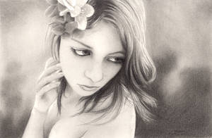 Charcoal 9 April 2011 by Avogel57