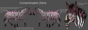 Infected Zebra concept (College)