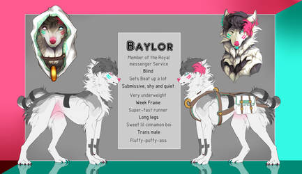  Baylor Ref 2018  by Summerrie