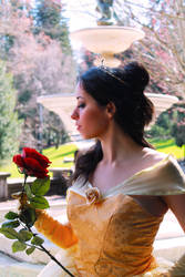 Princess Belle by CheesyHipster