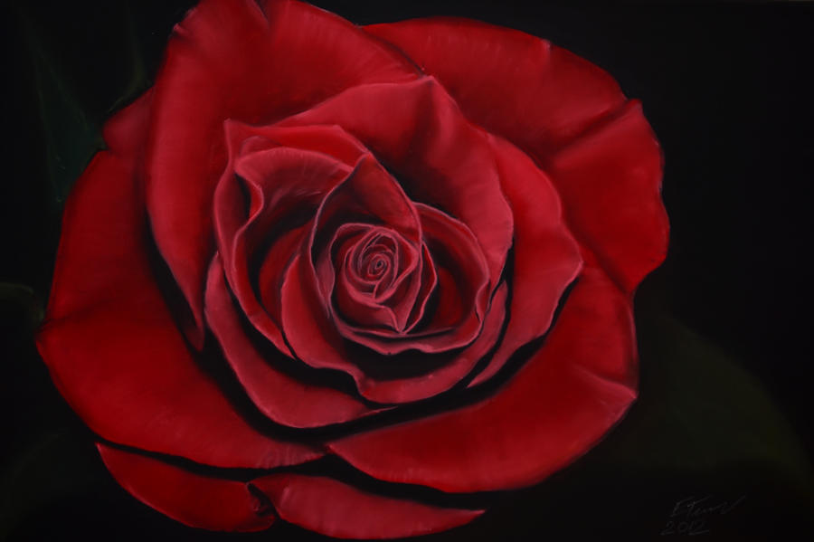 Rose by riksons