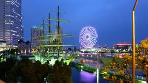 Yokohama Night 2