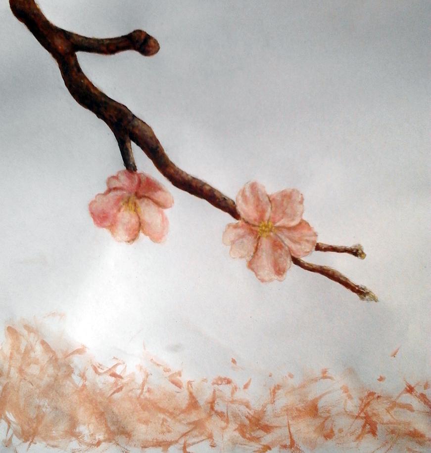 cherry blossom by viktori-Dv