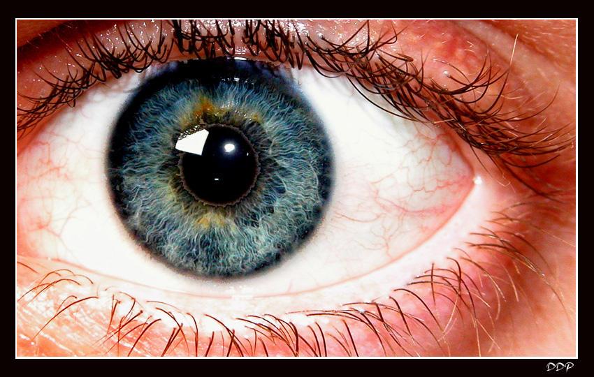 Envision by squarepush
