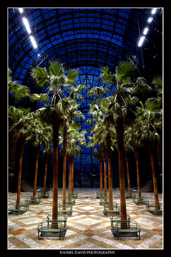 Winter Garden Reconstruction by squarepush
