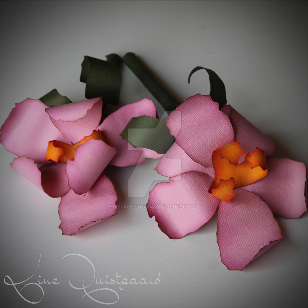Iris Paper Flowers by KittenontheKeys