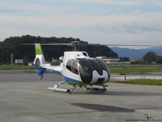 Helicopter 20140611 Eurocopter EC-130 _ 1 by K4nK4n