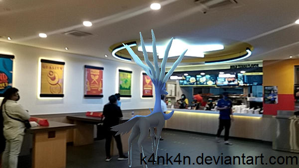 Xerneas orders takeout food