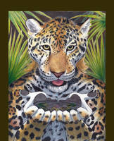 Thirsty Jaguar by RuntyTiger