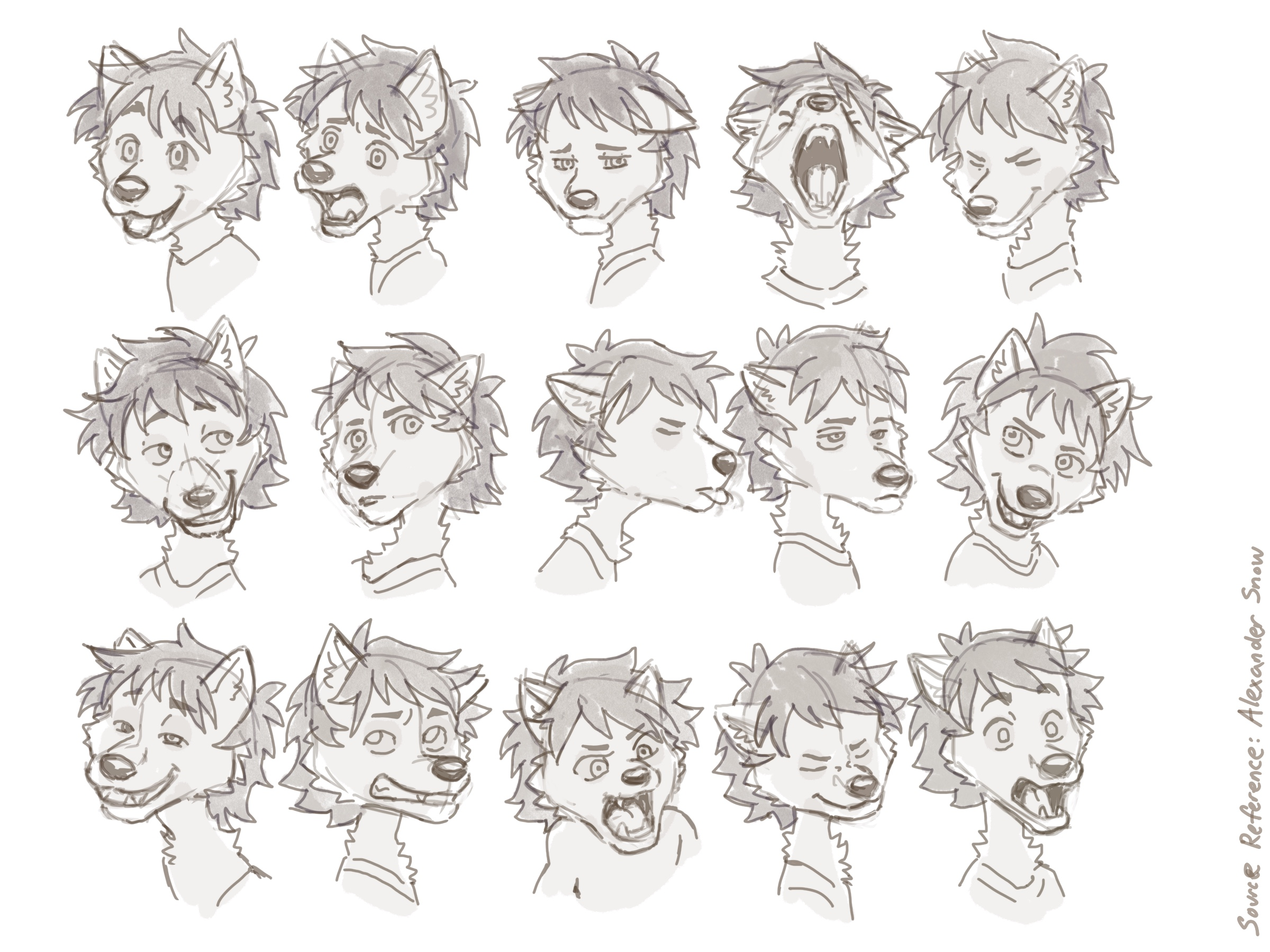 Sketch 9.27.2021: male wolf pup expressions