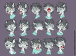 Char Study: Male Wolf Pup Expressions