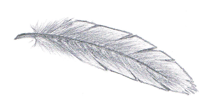 Simple Feather by AikoNa