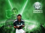 Danilo Palmeiras 23 by leofiger