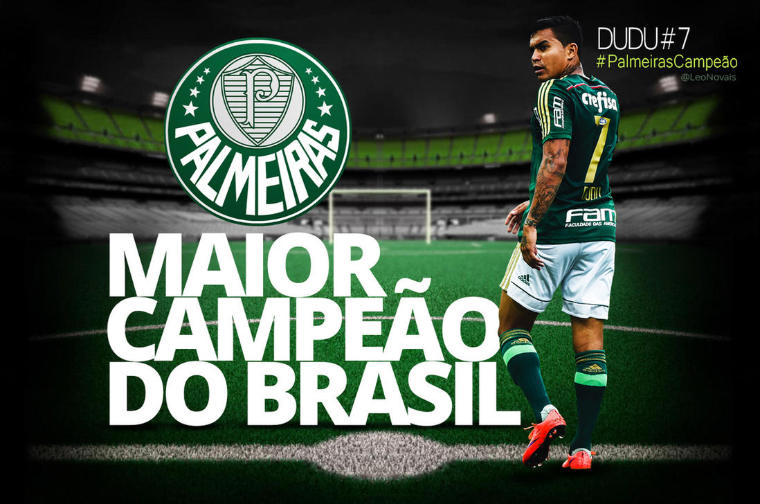 Palmeiras Copa do Brasil 2015 by leofiger