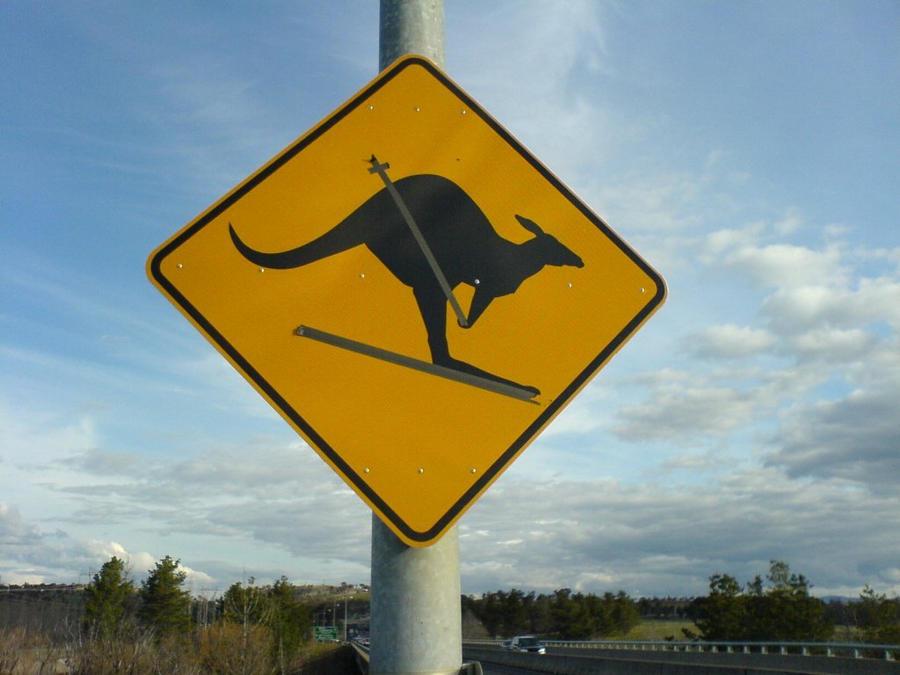 No Kangaroos in Austria? Sign__skiing_kangaroo_by_mudslinger_ning-d5clcxc