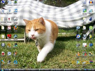 Kitty desktop by TaroNuke